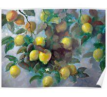 lemons.. Poster