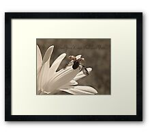 Spread Your Wings And Live Free Framed Print