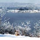 Frosty Fog on the Ohio River by Jeanne Sheridan