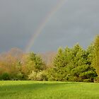 In Search of the Pot of Gold  by clizzio