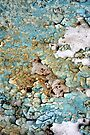 Beach Pebbles by AuntDot