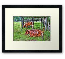 Pasture Scene Framed Print