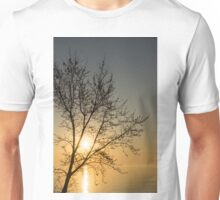 A Filigree of Branches Framing the Sunrise Unisex T-Shirt