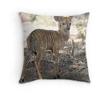 Baby Nyala Throw Pillow