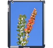 Ocotillo iPad Case/Skin