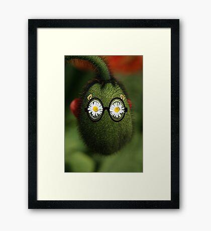 silly poppy Framed Print