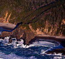 The Rugged Oregon Coastline by Kay Martin