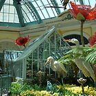 Bellagio's Conservatory and Butterfly House by Marjorie Wallace