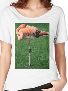 Lesser Flamingo T-Shirt Women's Relaxed Fit T-Shirt