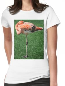 Lesser Flamingo T-Shirt Womens Fitted T-Shirt