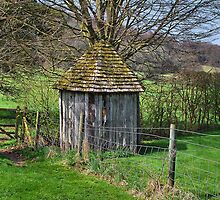 Little Shed by relayer51