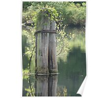 pilings reflection Poster