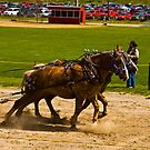 Horsepower-Endless Mountains Maple Festival by BigD