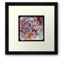 They hang on Framed Print