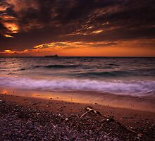 One Of These Days by Tony Elieh