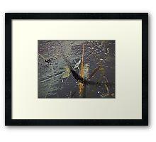 zen archer Framed Print