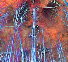Ice Tree Abstract by Susan Werby