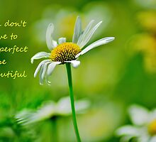 Perfect  by NaturesEarth