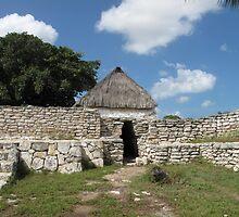 Mayan Ruins by broerse1