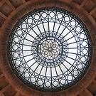 Amtrak Dome (2) by hallucingenic