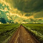 Long Road Home by AdamKnauer