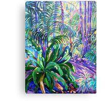 Walkway Tamborine Mountain Botanical Gardens  Canvas Print