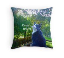 Dream Bright Cat Throw Pillow