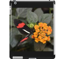 Butterfly with Red Banded Wings iPad Case/Skin