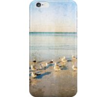 Beach Combers - Seagull Art by Sharon Cummings iPhone Case/Skin