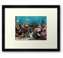 Tropical fish in coral reef Framed Print