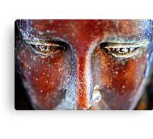Sculpted Angel Eyes Canvas Print