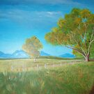 Stirling Ranges by Penny-Sue  Scott