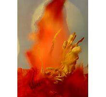 Blaze of Glory Photographic Print
