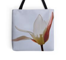 Spirit in the sky Tote Bag