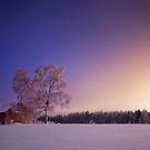 Dreamland II by Mikko Lagerstedt
