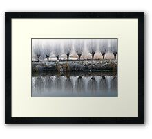 willow mirror Framed Print