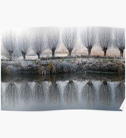 willow mirror Poster