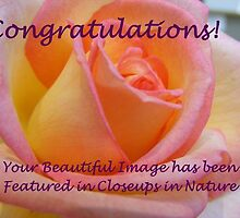 Rosy Congratulations by Monnie Ryan