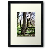 strong nature Framed Print