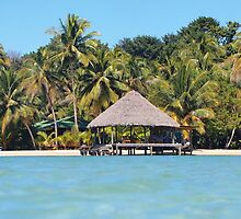 Tropical beach with thatched hut over the water by Dam - www.seaphotoart.com