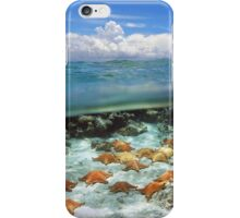 Group of starfish underwater and blue sky with cloud iPhone Case/Skin
