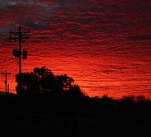 Red Sky Morning by Dewese Milstead