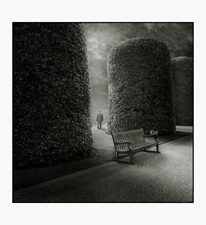 Bench I Photographic Print