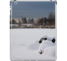 Fluffy Snowdrifts and Ominous,Threatening Skies  iPad Case/Skin