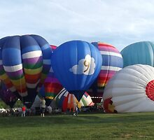 Hot Air Balloons At Turf Valley by Darlene Bayne