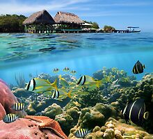 Coral reef fish underwater and tropical huts over water by Dam - www.seaphotoart.com
