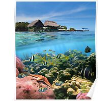 Coral reef fish underwater and tropical huts over water Poster