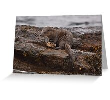 Otter with crab Greeting Card