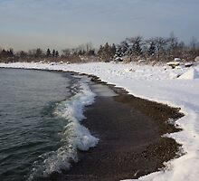 Winter Beach - Lake Ontario, Toronto, Canada by Georgia Mizuleva