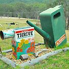 Thrive Box by Penny Smith